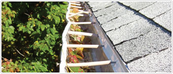 Best Eavestrough Protection for Seamless Gutters