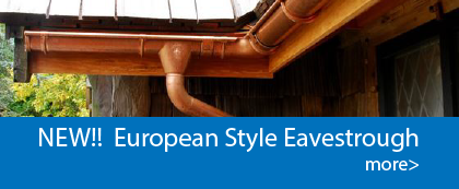 European Eavestrough